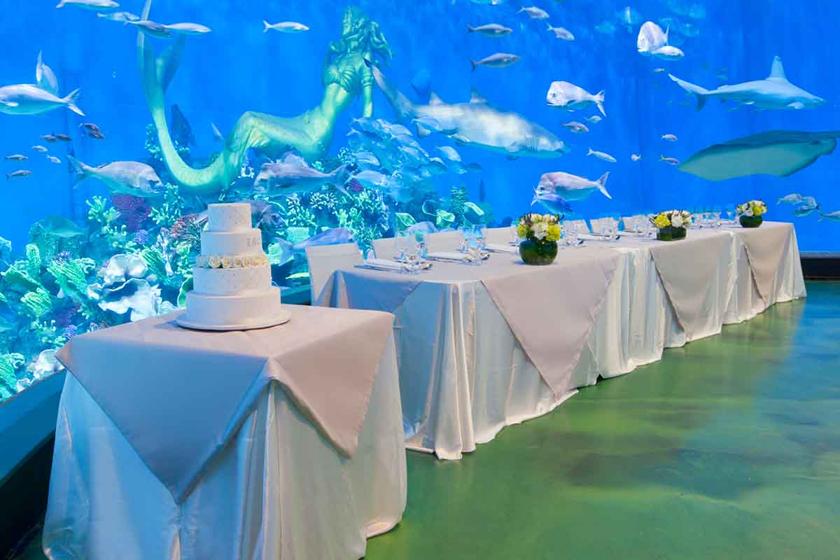 Sea Life – Melbourne Aquarium Hire