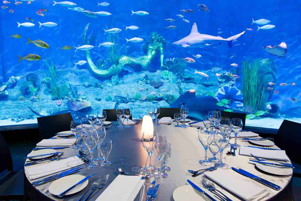 Melbourne Aquarium <br/> Top Function Venues