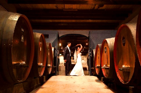 Saltram Wine Estate – Function Venues