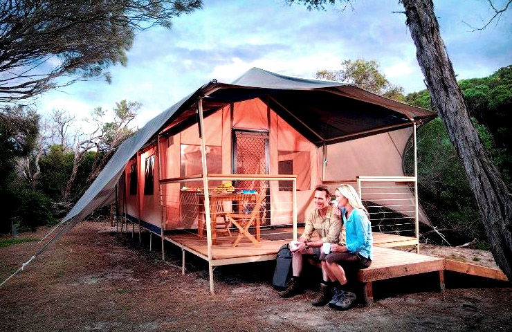 glamping-spots-best-top-fun-forest-bush-adventure-great-exciting