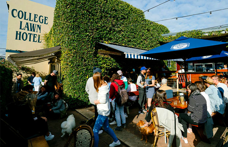 top-best-good-dog-friendly-pubs-pet-friendly-pubs-venues-melbourne-chapel-street-sport-food-beer-southside-beer-garden-terrace-college-lawn