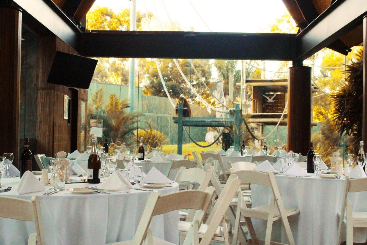 Unique wedding venues adelaide hidden city secrets adelaide zoo venues with a junglespirit Gallery