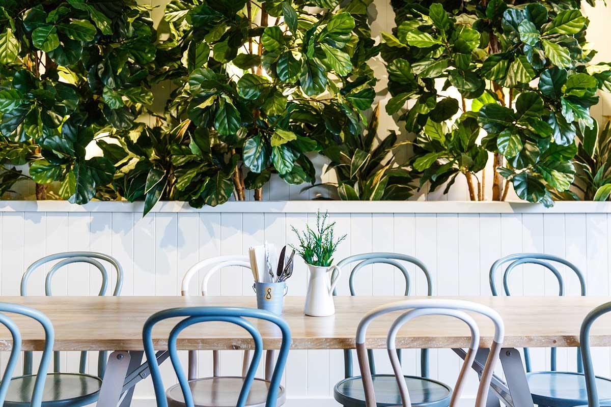 Shelbourne Hotel | Awesome CBD Bars | Hidden City Secrets