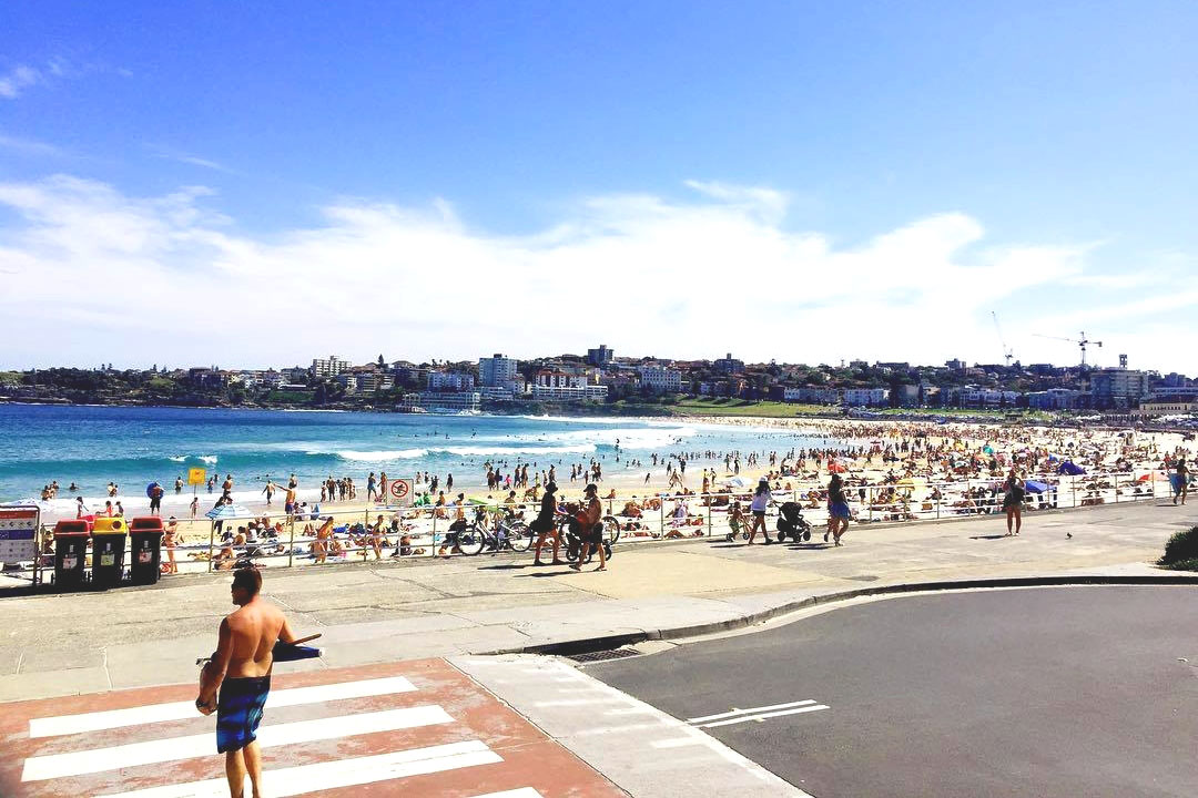 North Bondi Fish <br/> Waterfront Bars