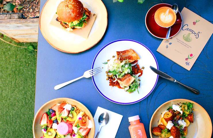 Campos <br/> Brisbane's Best Coffee