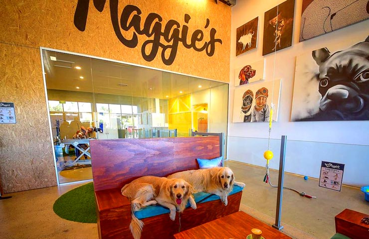 Maggie's Dog Cafe – Cutest Cafes