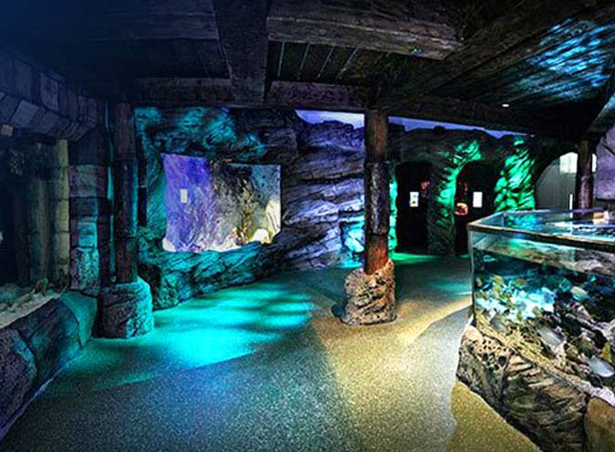 Sea Life Sydney Aquarium – Unique Venues