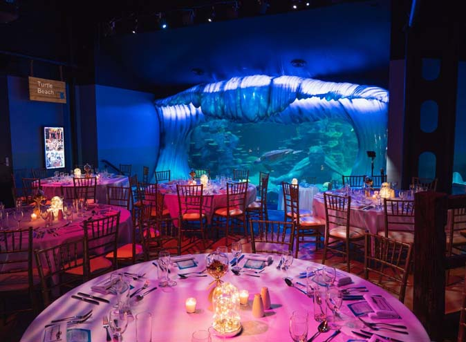 Sea Life Sydney Aquarium – Unique Venues