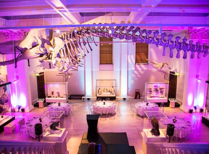 Australian Museum – Unique Event Venues