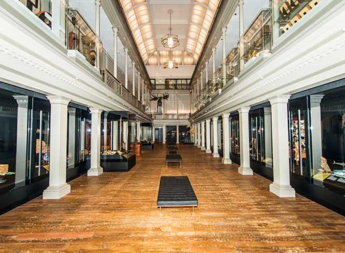 Australian Museum – Large Venues