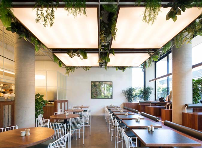 Bawa Cafe – Modern Eateries