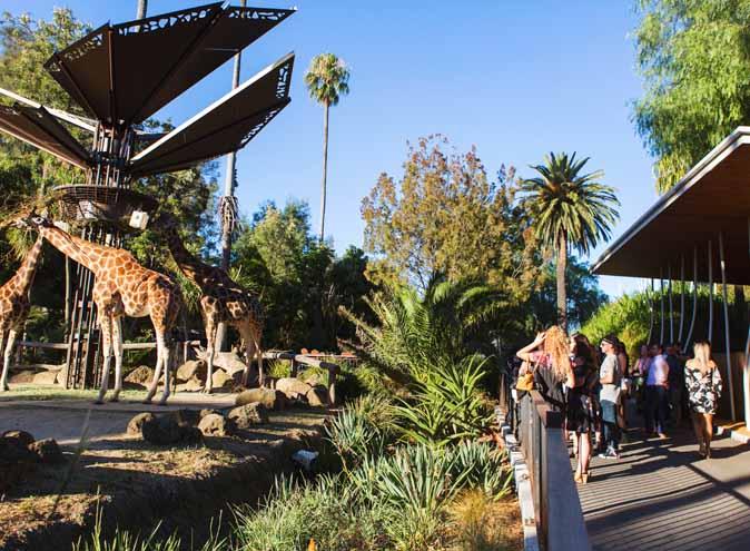 Melbourne Zoo <br/> Unique Event Venues