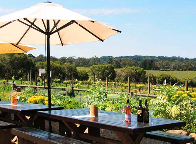 tgallant winery mornington penisula best wineries