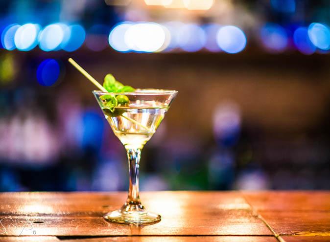Frisk Small Bar – Gin Bars