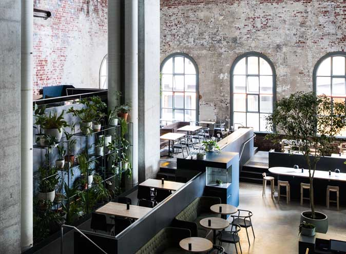 Higher Ground </br> Contemporary Cafes
