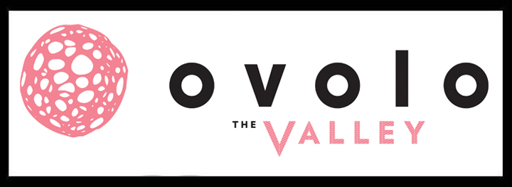 Ovolo function venues brisbane venue hire rooms fortitude valley party rooms event spaces rooftop pooldeck corporate conference logo