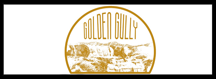 Golden gully small function venues sydney venue hire event rooms leichhardt west balcony rooftop intimate room birthday engagement party logo